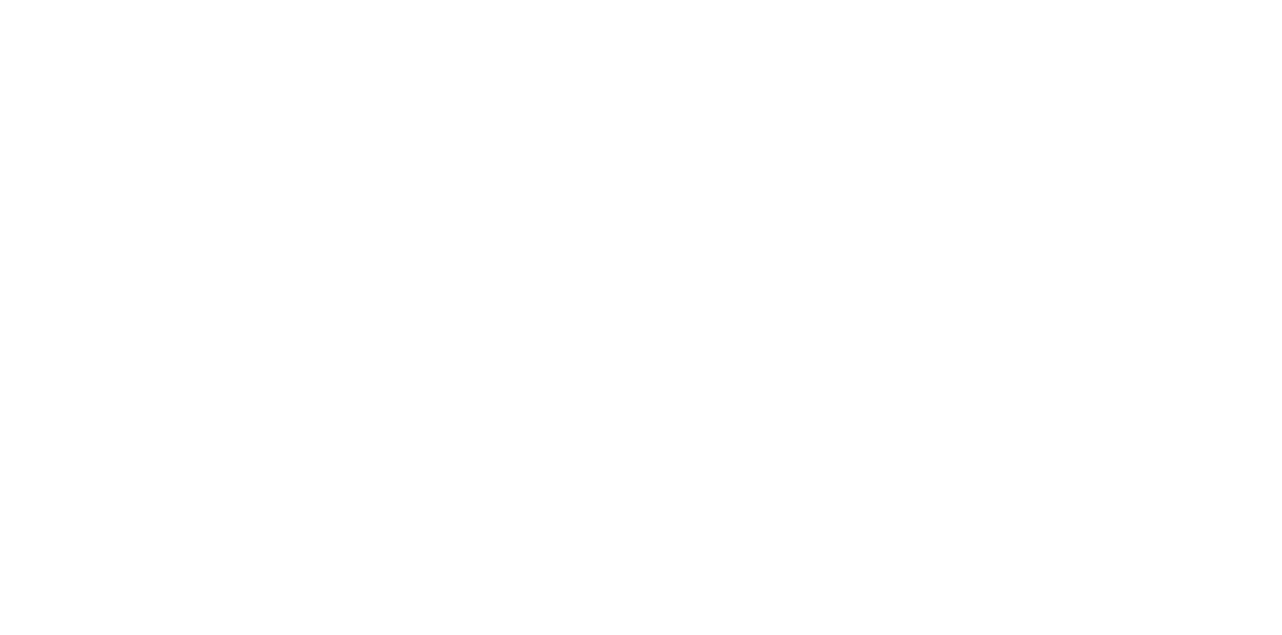Synergies Worldwide